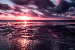 Coucher de soleil en été sur la plage de Coxyde