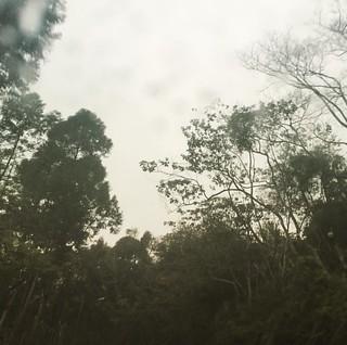 收工下雨,下雨收工⋯  #work #workday #rain
