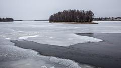 Joki jäätyy 2