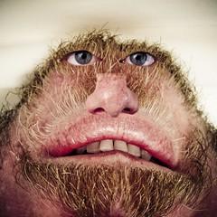 30.365 - Unkempt Caveman Chin Head by Jeff the Trojan