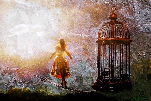 ~  free  ~ by AlicePopkorn