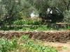 Growing metallboxes? by sara helene