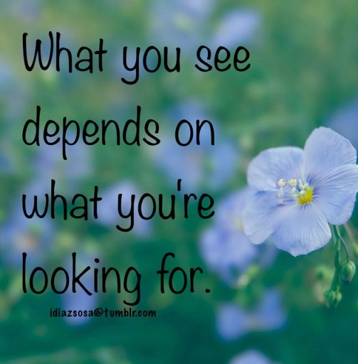 What you see depends on what you're looking for.