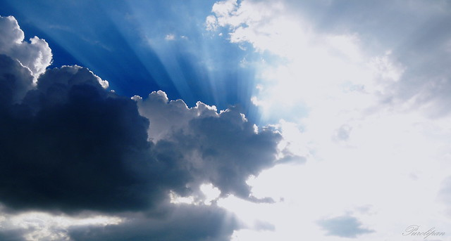 Luz I - Rayos de luz / Beams of light.