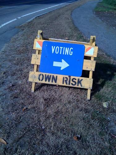 Voting: Own Risk