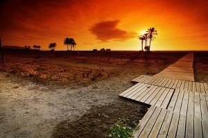 Last days of summer - Jose Maria Cuellar