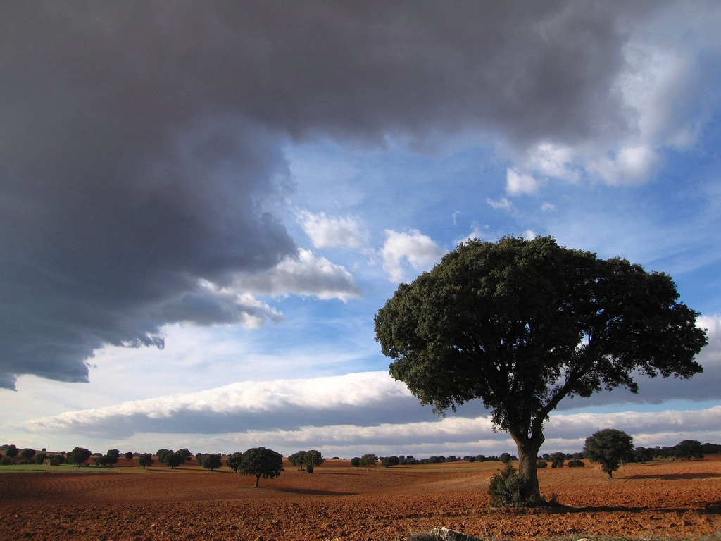 6. Campos de La Mancha, cerca de Montiel. Autor, Pablo Sánchez