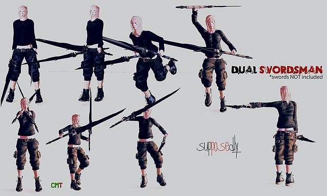 Poses Fighting Sword Dual