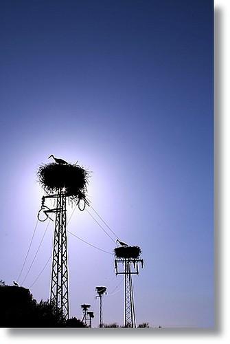 Hotel Cigüeñas / Hotel Storks