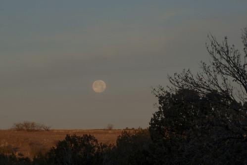 Bar Heart Moonset