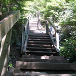 Chief Stairs
