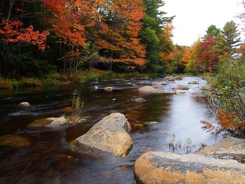 Photo: Autumn Bliss