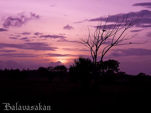 Waiting 4 tomorrow by Balavasakan