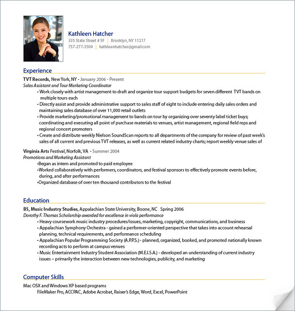 professional it resumes executive resume samples professional