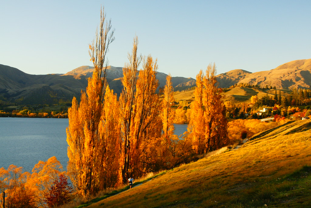Lake Hayes in Autumn