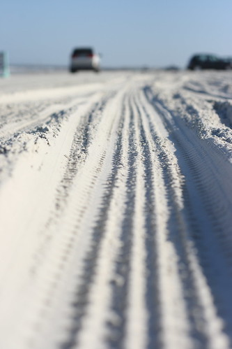 Tracks in the Sand by Corbin Elliott Photography, Denver Photographer