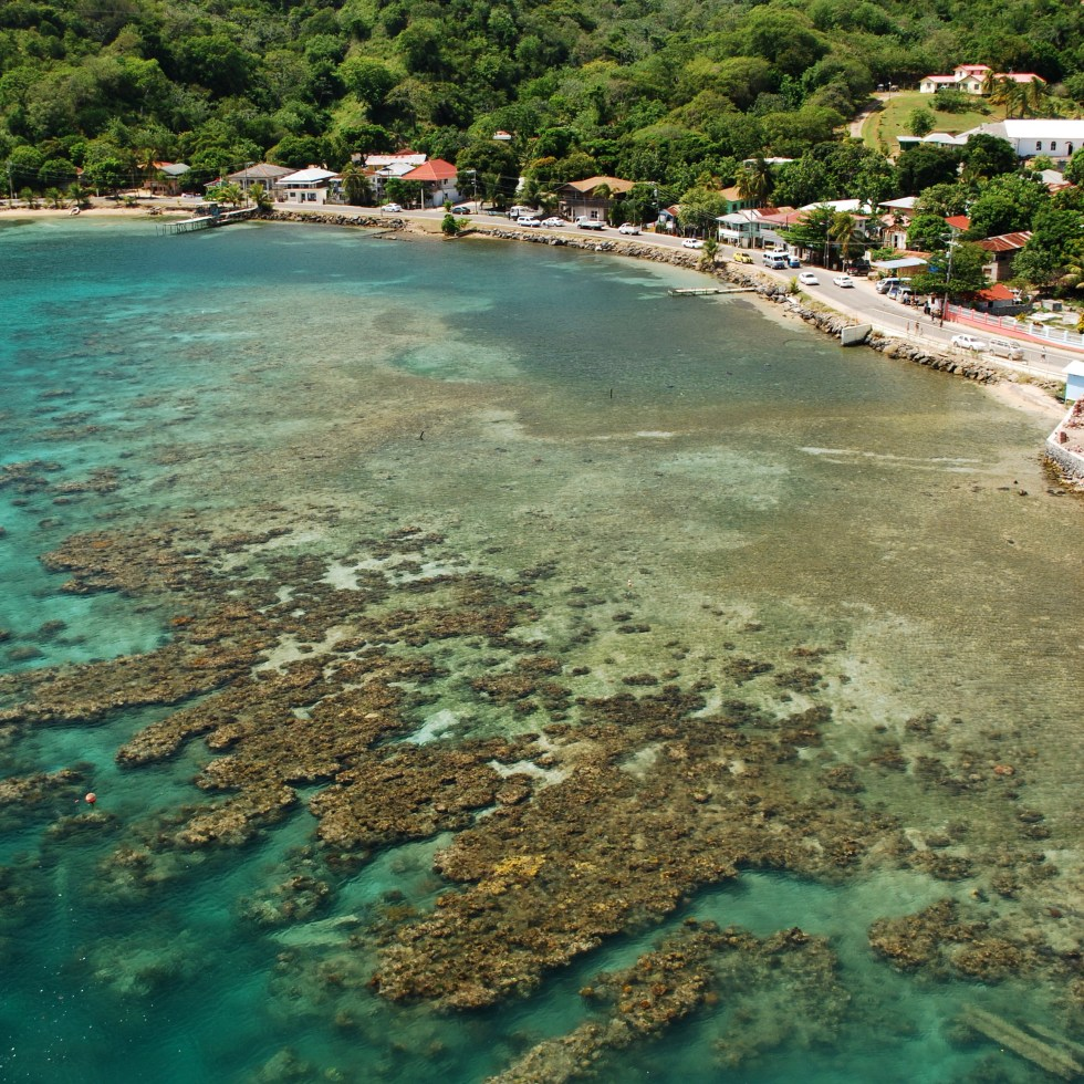 Roatan Island: A Visual Tour Of Roatan Island