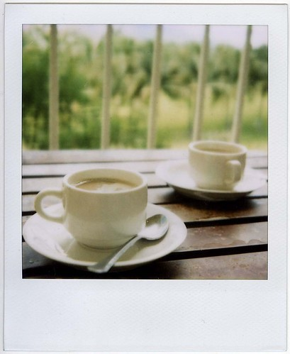 Polaroid Holiday *3