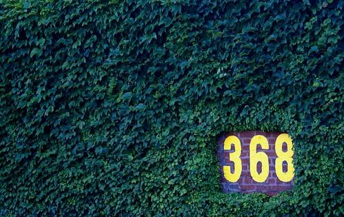 368 by Francesca...