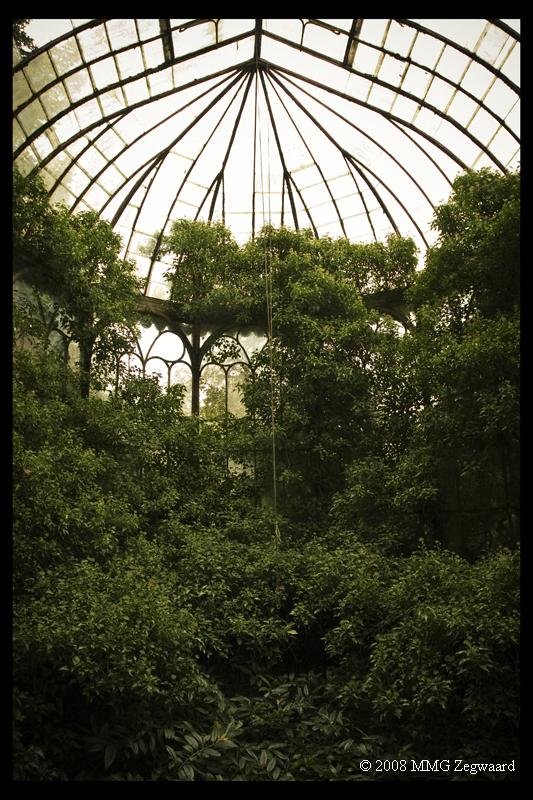 Chateau R Greenhouse