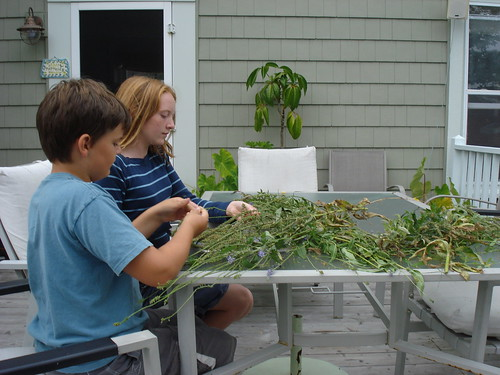 meaningful work--unschooling style
