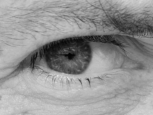 Occhio / Eye