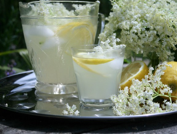 Prelude to Summer - Old Fashioned English Elderflower Cordial