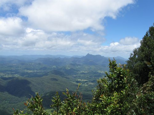 Mt Warning from Best of All Lookout