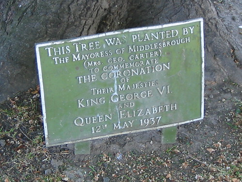 Mrs Geo. Carter Coronation Tree Plaque, Albert Park