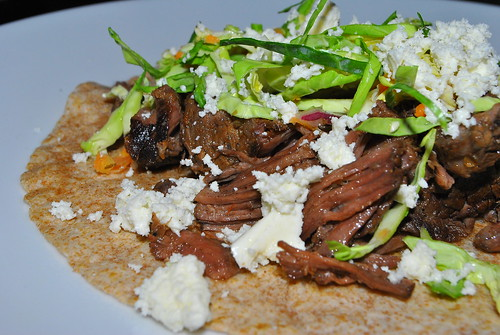 Beer Braised Beef Taco