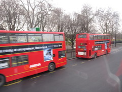 Double decker buses