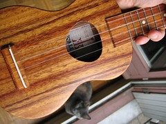 New ukulele day! // soundboard
