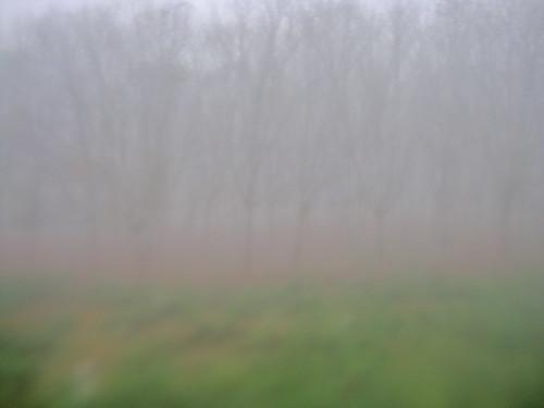 Through the misted up window, fog