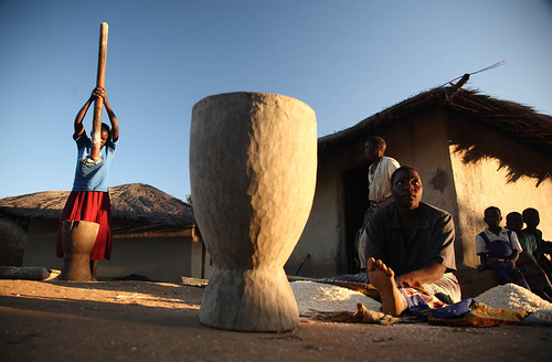 Women pounding grain for the evening meal in Khulungira Village, in central Malawi