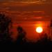Chula Vista Sunset - Red