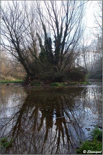 Espejo en el río
