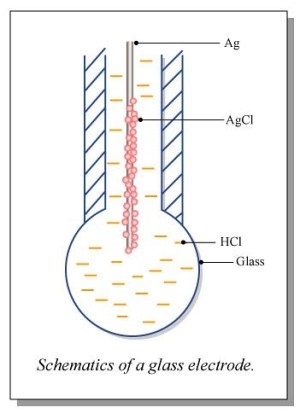Schematic of a Glass Electrode | Flickr  Photo Sharing!