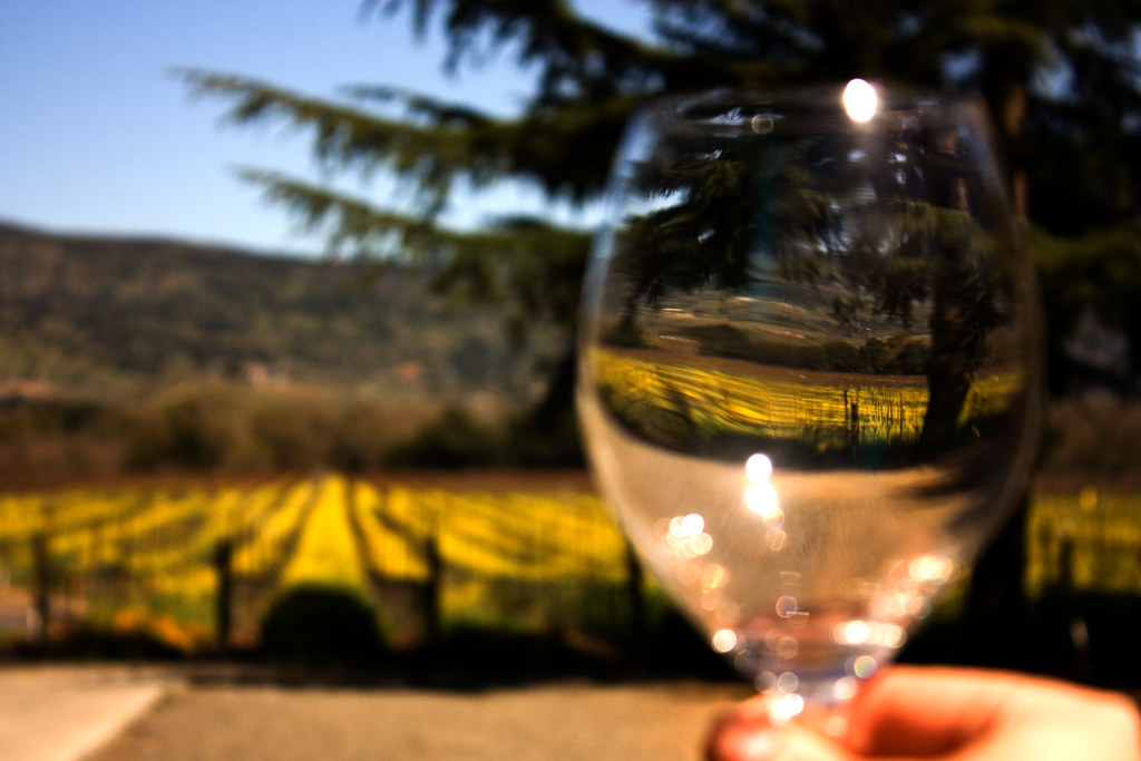Looking through a Wine Glass