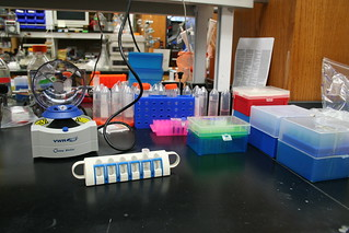 Lab Bench