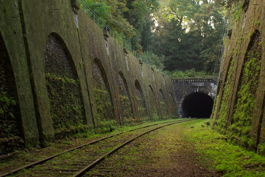http://twistedsifter.com/2013/04/petite-ceinture-abandoned-railway-in-paris/