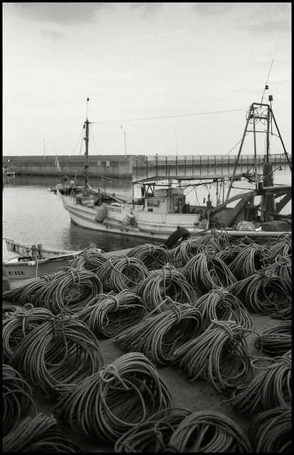 Leica M5 + Summaron 35mm F2.8