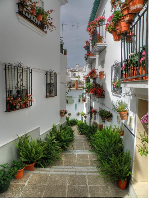Una calle de Algarrobo