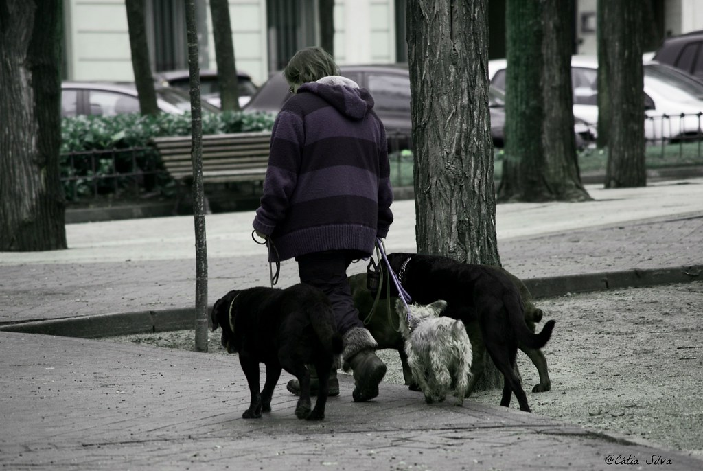 Around Madrid (4)