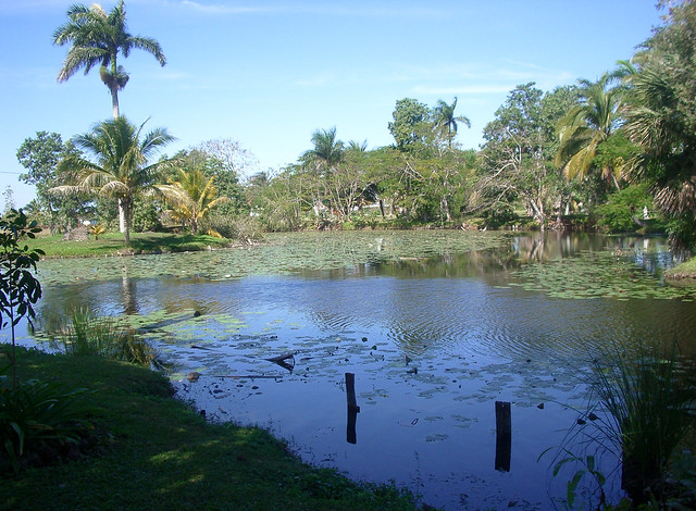 Day 4 Zapata Swamp Flickr Photo Sharing