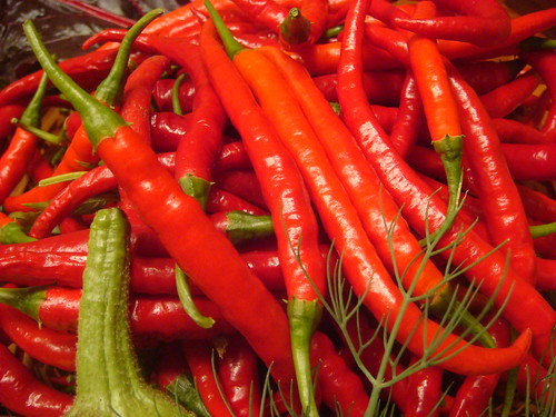 Chilies from my garden