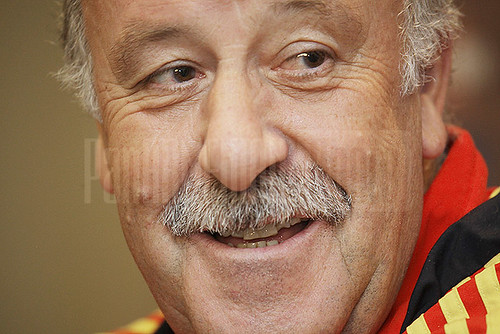 Vicente del Bosque in Yerevan