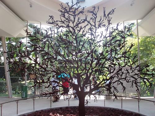 200907260776_Singapore-botanic-garden-tree-of-life