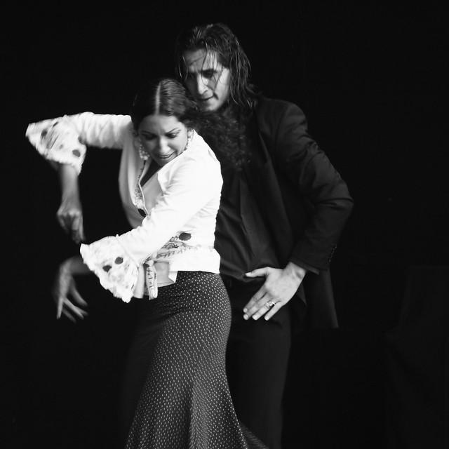 flamenco, ivory + ebony