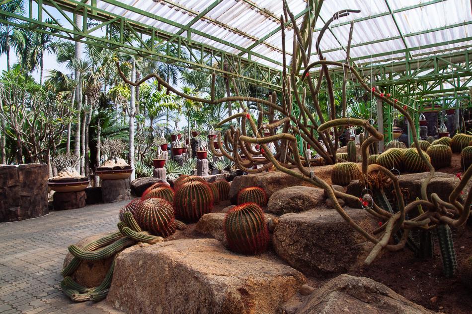 Cactus Garden, Nong Nooch Tropical Garden, Pattaya