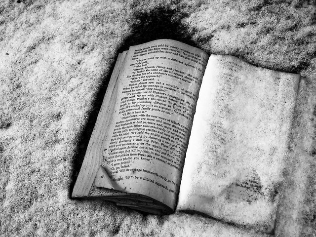 Book in the Snow